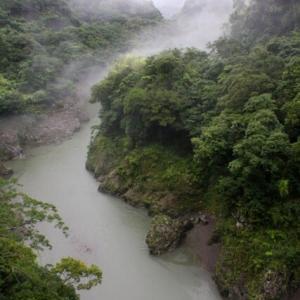 霧の山峡へ[九州脊梁山地:ヤマメ幻釣譚<95〉]