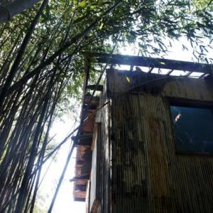 屋根瓦と屋根板を剥がし、室内空間と天空が一体となる [古民家再生ARTプロジェクト/宮崎自然素材アート展2021〈15〉]