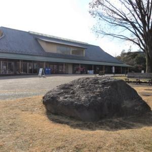 昭和記念公園(1)ロウバイとセツブンソウ