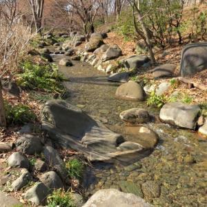 下河原緑道と郷土の森公園 その3