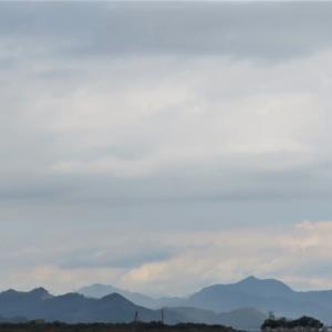 10ケ月振り、昭和記念公園散策