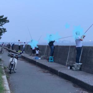 2019/7/2  横浜福浦岸壁