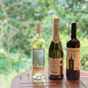 今晩はのんびりワインをたのしみましょ!