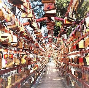 Pt4長野被災地巡り(上田城跡真田神社と上田名物くるみそば?)