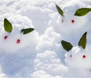 寒い時期は体を温めようとして脂肪を燃焼しやすいのでダイエットチャンス