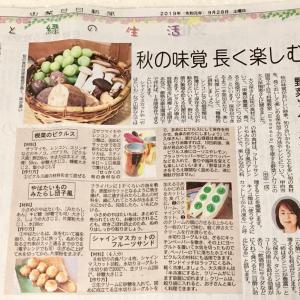 山梨日々新聞掲載!秋の味覚長く楽しむ野菜ソムリエレシピ】