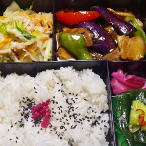朝楽!夏野菜いろいろ彩り弁当