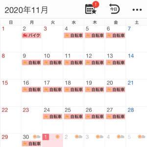 2020年11月の走行記録