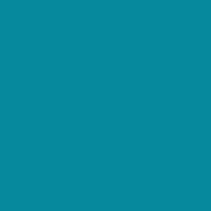 クイズ!この色なんの色