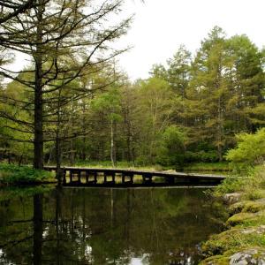 9-3 御泉水自然園