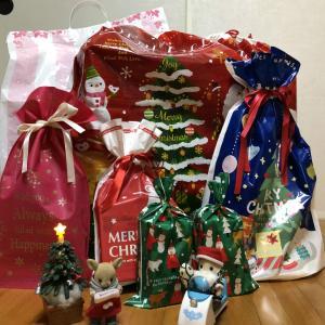 キヌタクロースからのクリスマスプレゼント♪