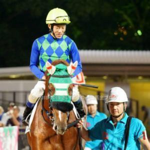 [アランブレラ] 4歳10月 中央再転入の際は、美浦・尾関知人厩舎へ預託・そして帰厩しました
