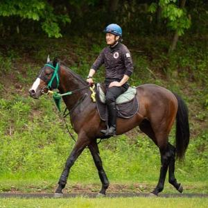 [クローヴィス] 2歳7月 しがらきに移動して坂路では15-15、馬体重は468キロ
