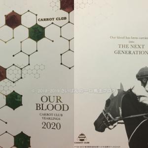 [出資検討] キャロット2020年度1歳馬募集・最優先抽選馬予想29頭