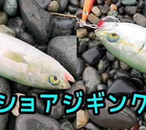 悪天候!×突撃×ショアジギ(๑╹ω╹๑ )