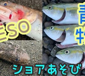 USO!×ESO!×ショアあそび(*´ω`*)