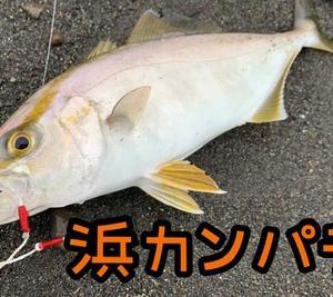 仕事前!×平日×ONEぱち!( ̄^ ̄)b