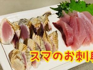 スマ×刺身×炙り(´∀`)まいう〜♪