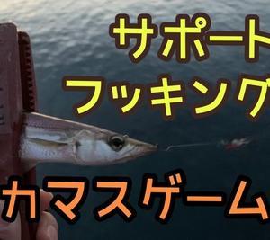 フッキング❗×自作鬼爪×ボウズ回避\(^o^)/