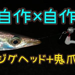 カマス❗️×まだ狙う!×他の魚は調査中(*´з`)