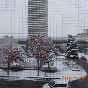 191115 琴似駅前雪景色