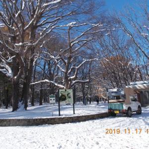 191117 赤楢の雪景色