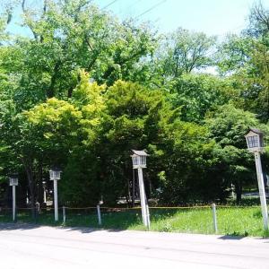 200613 新琴似神社