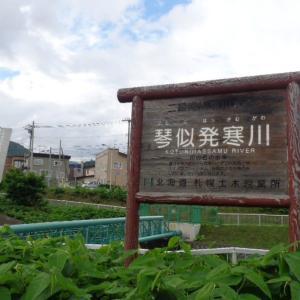 200708 西野神社 紫陽花