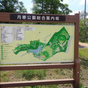 200720 紫陽花 月寒公園