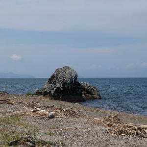 《漂着するもの》琵琶湖東岸 2