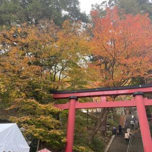 2020.11 奈良 談山神社の紅葉。