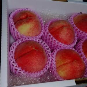 今年もお中元用の桃を受け取りに・・・・おまけがいっぱい。