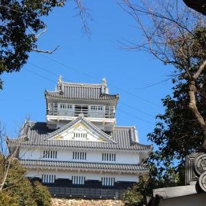 餌を頬張るリスを手にも乗せ、岐阜城からの絶景を楽しむ