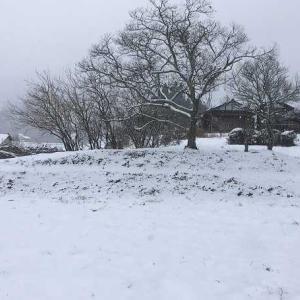 雪降る年末年始に、美味しいモノ&お得なモノ盛り沢山