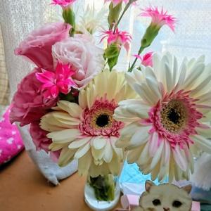 5月~7月のお花