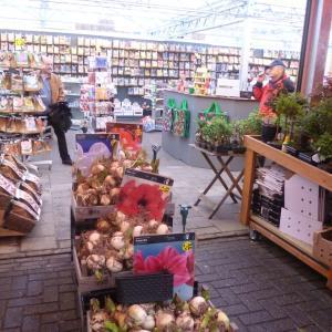 アムステルダム・シンゲル通りの花屋さん 2