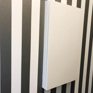 楽天☆トイレの収納扉の中身