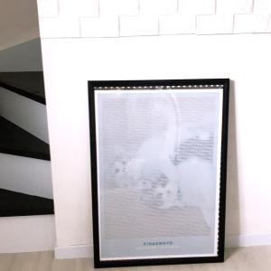猫のいる暮らし☆うちのにゃんこをポスターにしてみました♪