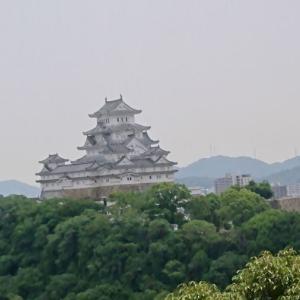 去年の今日のブログ~今度は姫路城へ(お菊井戸)