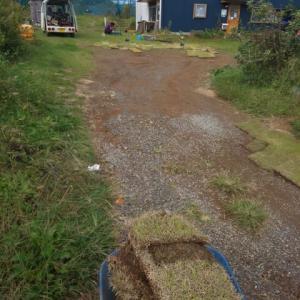 芝生で補修