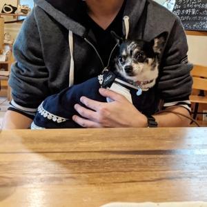 カフェでランチ【2020 軽井沢旅行3日目】