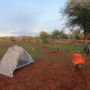 農場でキャンプ