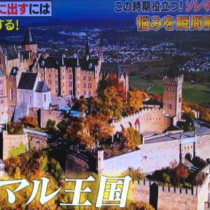 『ソレダメ!』①2019年11月20日★ソレマル王国のまっすー王子   ( ˊᵕˋ )✩‧₊˚