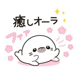 『NEWS RING』&まっすーのメッセージ動画&大阪も中止・・・(´・ω・`)