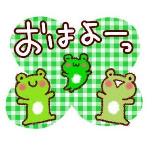 今日は世界禁煙デーと『NEWSな2人』が福岡で久々に放送されるみたい   ヽ(´▽`)/