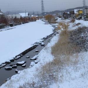 朝起きると雪景色