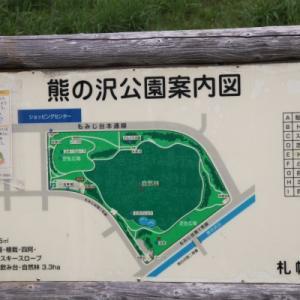 「熊の沢公園」の花壇