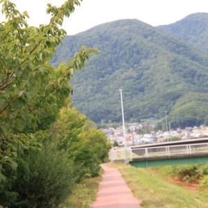 散歩「中の川沿い」国道5号線まで