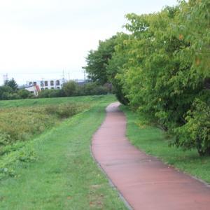 散歩「中の川沿い」新川まで