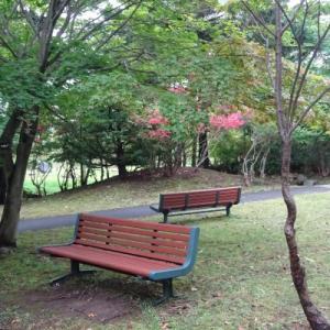 初秋の「熊の沢公園」